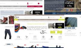 Package 3 sites e-commerce domaine équitation
